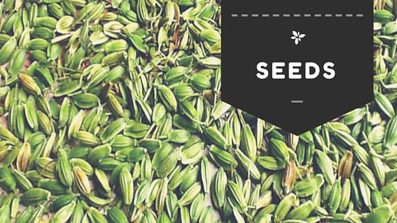 Ashitaba Seeds